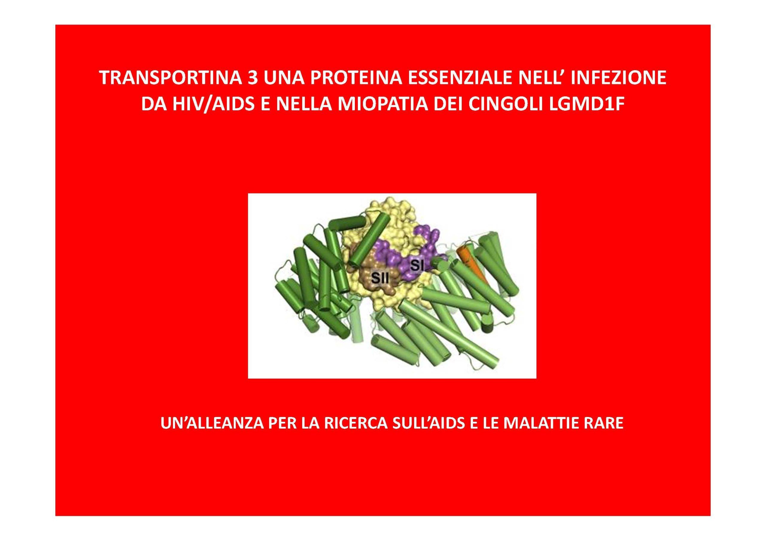 TRANSPORTINA 3 ITA-1_Pagina_1